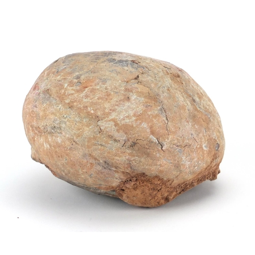 23 - Prehistoric fossilised dinosaur egg, 11cm H x 15cm W x 13cm D...