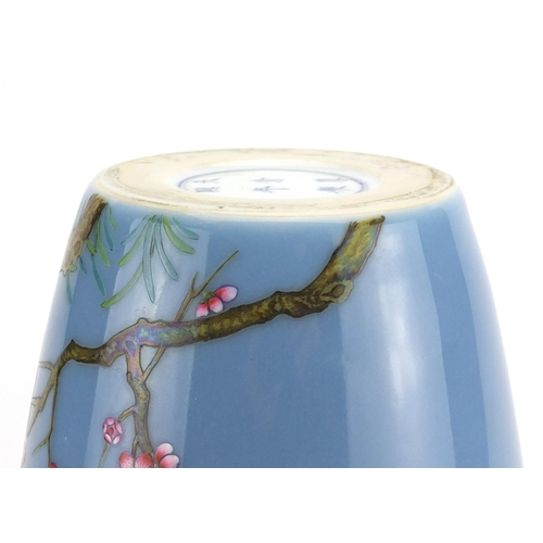 412 - Chinese porcelain vase, hand painted in the famille rose palette with branches of blossoming trees, ...