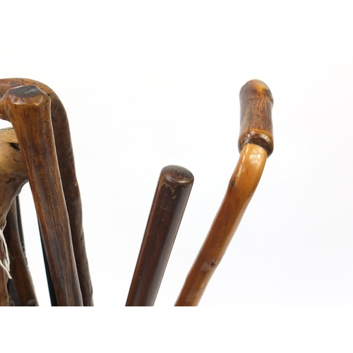 5 - Group of walking sticks, some naturalistic and some with horn handles, in a brass stick stand...