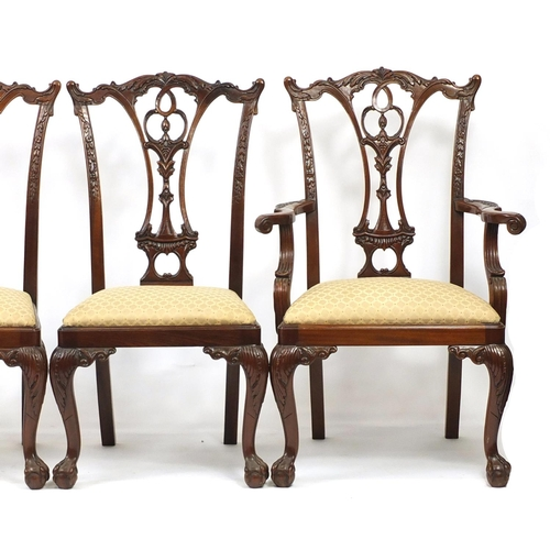 2020 - Set of eight Chippendale style mahogany chairs with drop in seats including two carvers, all raised ...