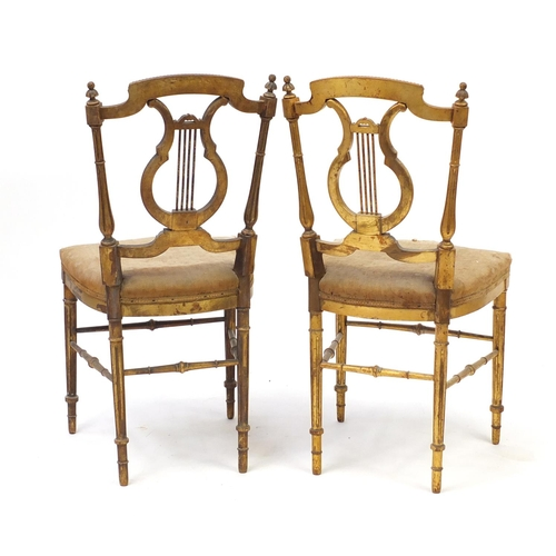 2060 - Pair of 19th century French Louis XVI style gilt wood chairs with canes backs, each 86cm high...