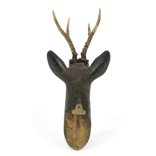 2012 - Black forest carved wood deer's head with glass eyes, 56cm high...