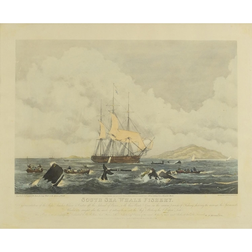 19 - After W J Huggins - South Sea Whale Fishery, early 19th century coloured engraving, engraved by T Su...