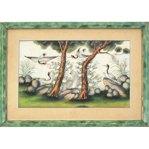 3043 - Good Chinese pith painting of cranes and a mythical bird amongst trees in a landscape, mounted, fram...