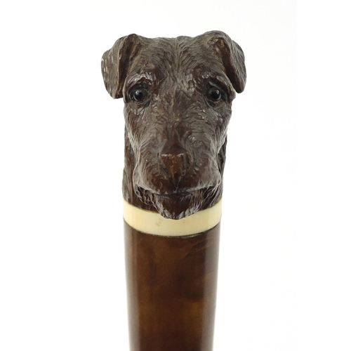 3011 - Malacca walking stick with dog head design pommel, the collar impressed Brigg, 92cm in length...