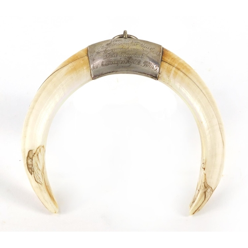 59 - 19th century military interest boars tusk pendant with white metal mount, engraved Worn during the P...