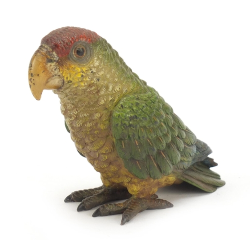 45 - 19th century Austrian cold painted bronze parrot in the style of Franz Xaver Bergmann, 9.5cm high...