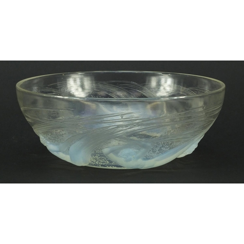 680 - René Lalique Calypso frosted and opalescent glass bowl, moulded R Lalique and etched Lalique to the ...