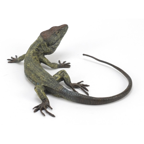 20 - Large Austrian cold painted bronze lizard in the style of Franz Xaver Bergmann, 25cm wide