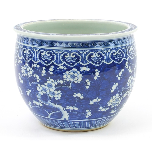 56 - Large Chinese blue and white porcelain jardinière hand painted with prunus flowers, 24.5cm high x 30...