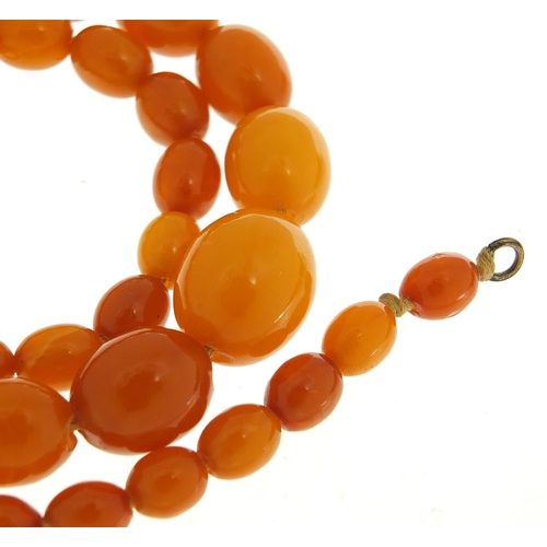 58 - Butterscotch amber coloured graduated bead necklace, 44cm in length, 23.2g