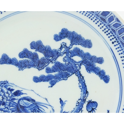 10 - Chinese blue and white porcelain plate hand painted with a pine tree, foliage and a bird, character ...