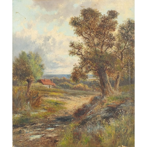 457 - Trees before a cottage, oil on canvas, indistinctly signed, possibly A Hellef...?, unframed, 61cm x ...