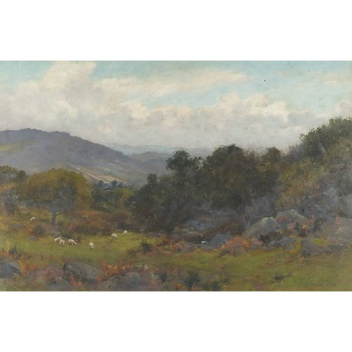 469 - T Clinton Jones - Sheep before trees and hills, Welsh oil on canvas, mounted, framed and glazed, 51c...