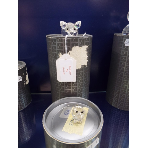 53 - A boxed Swarovski 'Pig' complete with certificate along with another smaller pig complete with box...