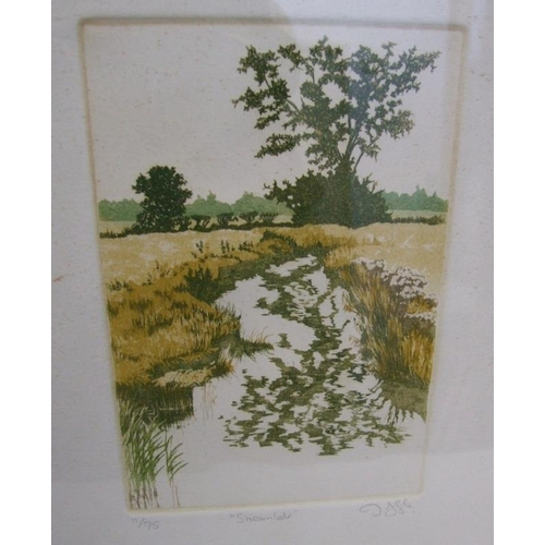 341 - 3 F/g Limited Edition Prints No. 11 of 75 'Streamlet', No. 6 of 65 'Brooklet' & No. 3 of 75 'Rivulet...
