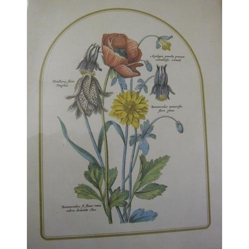 350 - Set 4 F/g Botanical Studies (4) (A4)...