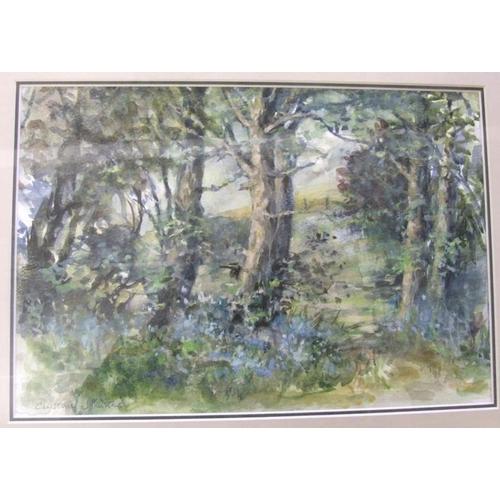 354 - F/g Watercolour 'Woodland' by Christine Johnstone (FWR)...