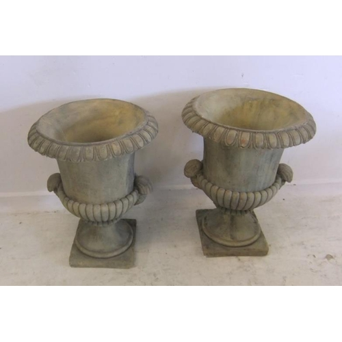 221 - Pair Hadden Hall Style Classical Pre Cast Cement Urns with shell handles, on square bases, approx 22...