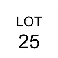 Lot 25