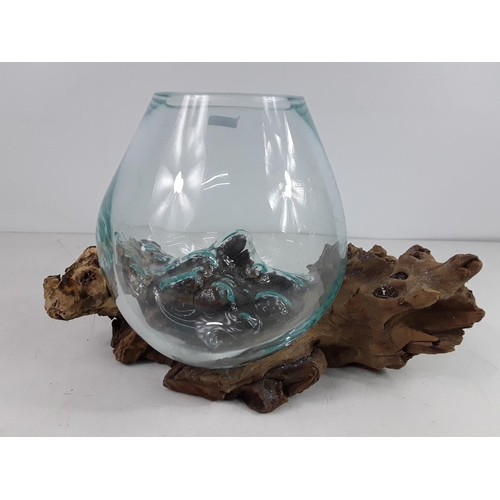 50 - Driftwood and glass vase...