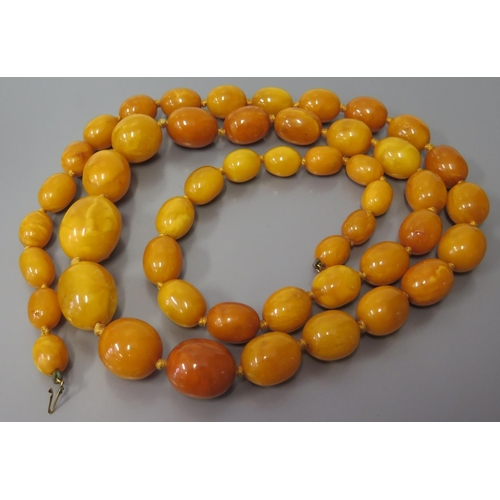255 - An Amber Bead Necklace, 151.6g, largest bead 28 x 22mm...