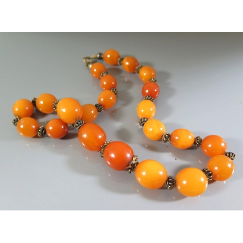 254 - An Amber Bead Necklace, 35.8g...