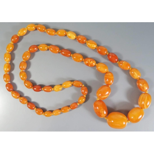 215 - A Large Baltic Butterscotch Amber Bead Necklace, largest c. 27 x 20mm, 67.8g...