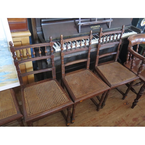 555 - Play set of 6 French cane seated dining chairs...