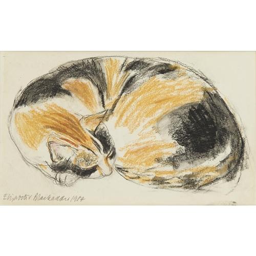 38 - [§] ELIZABETH BLACKADDER O.B.E., R.A., R.S.A., R.S.W., R.G.I. (SCOTTISH B.1931)<br><br>SLEEPING CAT ...