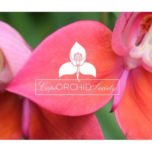 74 - Charles Darwin - FERTILISATION OF ORCHIDS