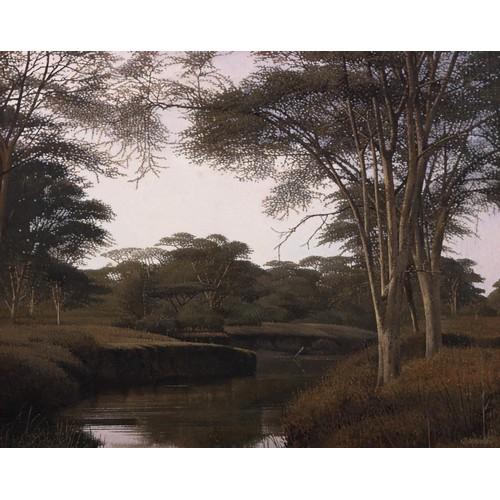 321 - Daan Vermeulen (South African 1934 - ) FEVER TREES
