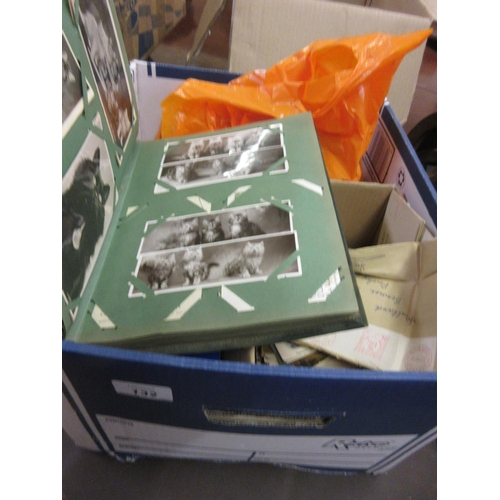 132 - Album containing a collection of cat related postcards, quantity of various loose cartes de visite a...