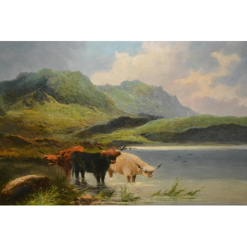 1181 - Early 20th Century oil on canvas applied to board, Highland cattle watering, in original gilt frame,...
