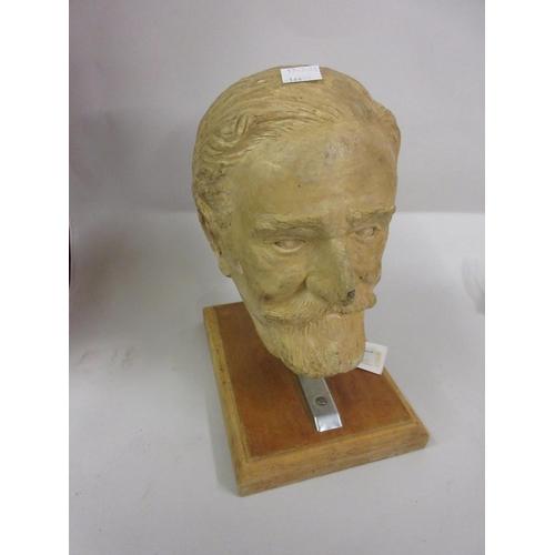 117 - 20th Century wax model head of a bearded gentleman...
