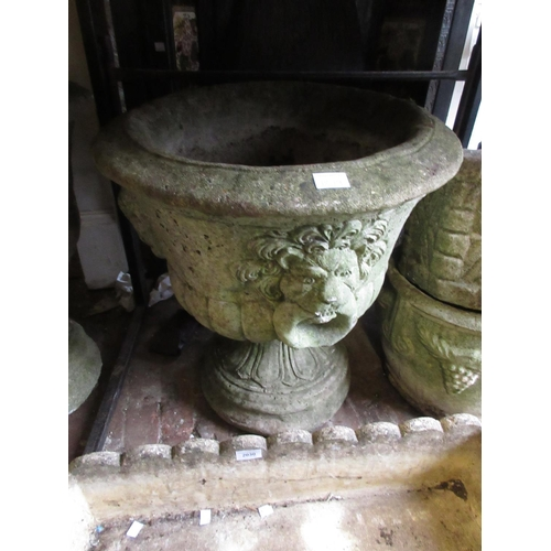 1899 - Pair of weathered cast concrete pedestal garden planters with lion mask decoration in relief...