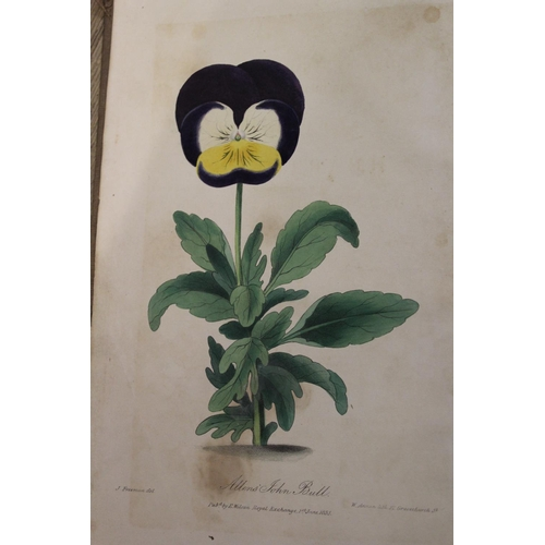 332 - One volume ' A History and Description of the Different Varieties of the Pansey or Heartsease ' by J...