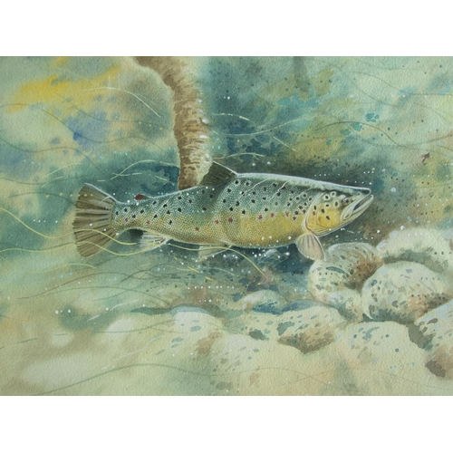 558 - •Robin Armstrong (b. 1947) FISHES EYE-VIEW- A TROUT FOLLOWING A FLY, FISHERMAN'S SHADOW ABOVE Signed...
