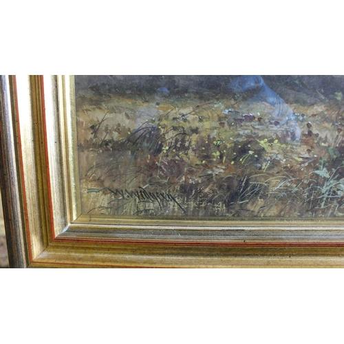 559 - William Widgery (1826-1893) CATTLE ON DARTMOOR, LOOKING TOWARDS SHEEPSTOR Signed watercolour, 26 x 1...