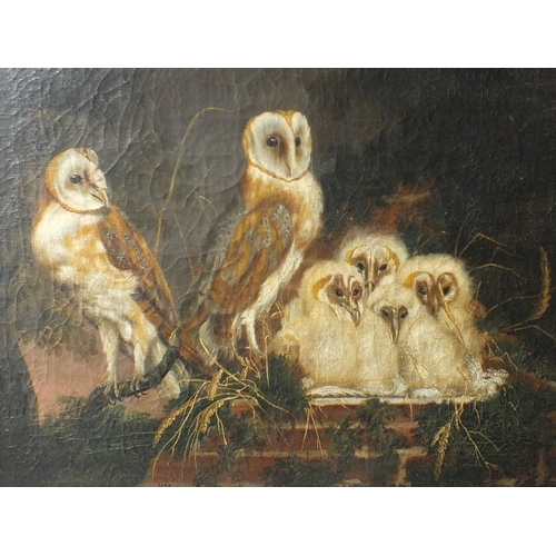49 - William Tomkins (c. 1730-1792) BARN OWLS AND A NEST OF FLEDGLINGS Signed oil on canvas, dated 1769, ...