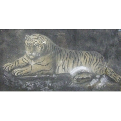 26 - 19th Century English School STUDY OF A TIGRESS LYING ON A ROCK Unsigned watercolour heightened with ...