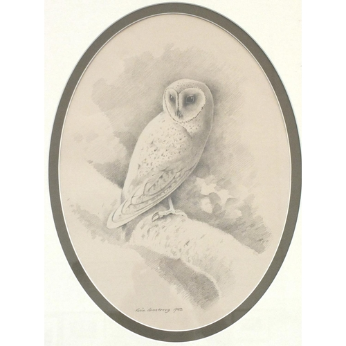 33 - Robin Armstrong (b.1947) BARN OWL Signed watercolour, dated 1983, in oval mount, 36 x 26cm, with a p...