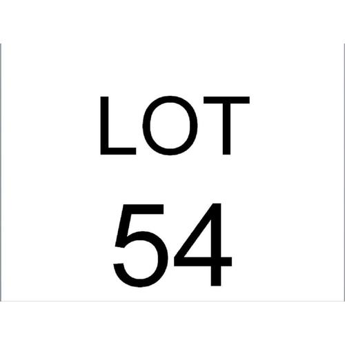 Lot 54