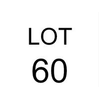 Lot 60