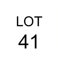 Lot 41