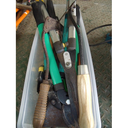 12 - Small plastic box containing a selection of various gardening type tools...