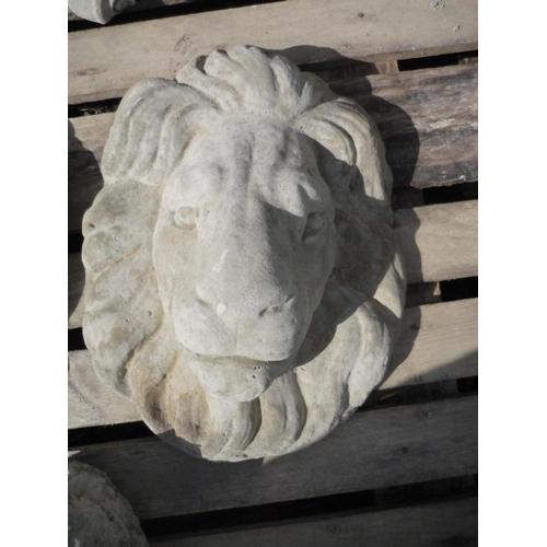 3 - Lion mask...