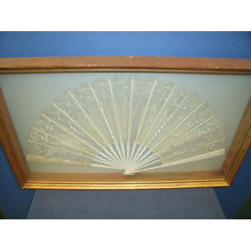 56 - Gilt framed and mounted 19th/20th C Chinese silk work fan with carved ivory spines (73cm x 43cm x 7c...
