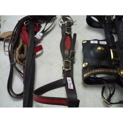 48 - Bridle with snaffle bit, Two pairs of reins and head collar...