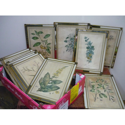 263 - Set of ten framed and mounted 18th C botanical book plate prints in mirrored frames, each plate with...